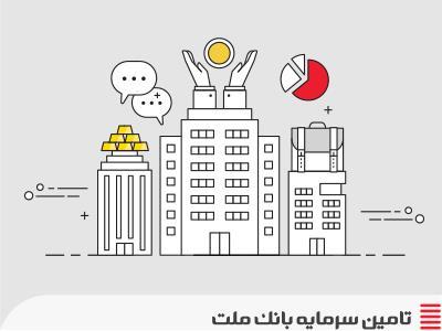 دانش تامین مالی-کارکرد شرکتهای تامین سرمایه